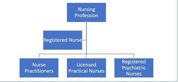 Nursing professions in Canada