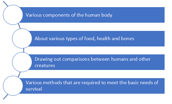 Anthropology homework help online
